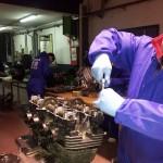 curso mecanica de motos Madrid kawasaki